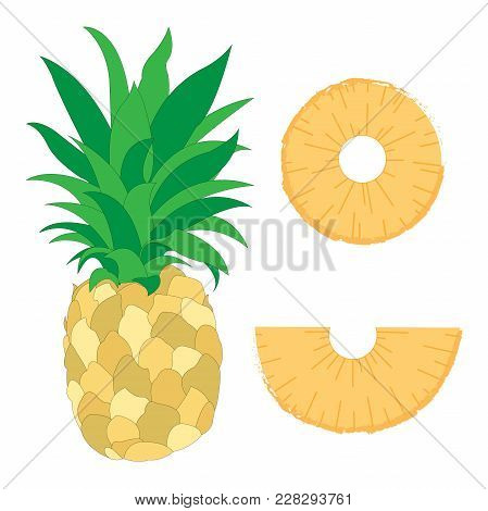 Tropical Fresh Sweet Pineapple Fruit Vitamin Fresh