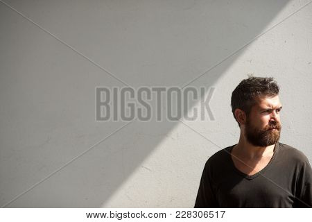 Bearded Man On Grey Wall, Barbershop. Hipster With Beard, Mustache, Unshaven Face, Hair. Barber, Bar