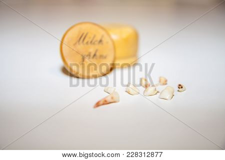 Collection Of Extracted Milk Teeth In Front Of Wooden Box - Translation: Milk Teeth