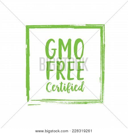 Gmo Free Certified Lettering. Creative Inscription In Green Square Devoted To Healthy Eating. Handwr
