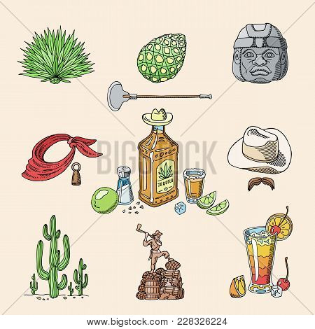 Tequila Shot Vector Mexican Alcohol In Bottle Drink With Lime And Salt In Taqueria In Mexico Illustr