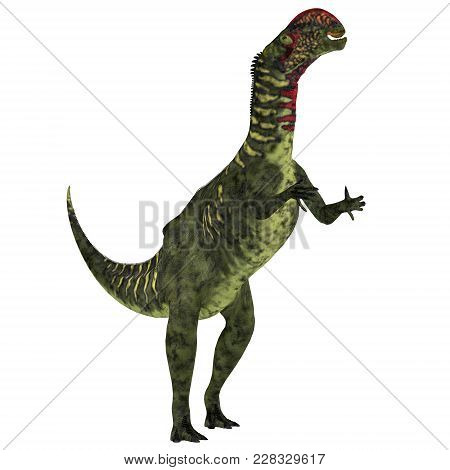 Altirhinus Dinosaur On White 3d Illustration - Altirhinus Was An Iguanodont Herbivore Dinosaur From