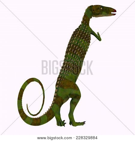 Scutellosaurus Dinosaur Tail 3d Illustration - Scutellosaurus Was An Armored Herbivore Dinosaur That