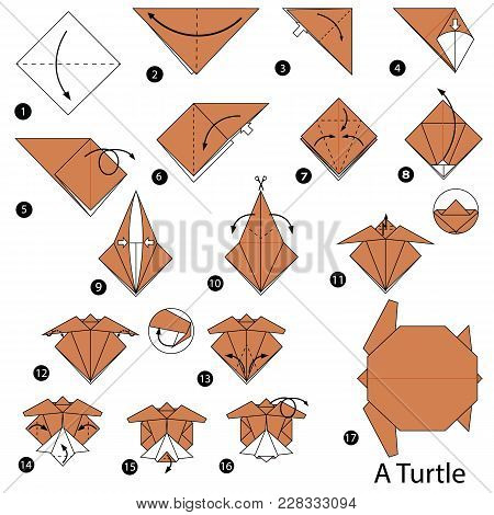 Step By Step Instructions How To Make Origami A Turtle