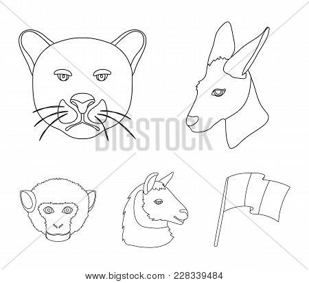 Kangaroos, Llama, Monkey, Panther, Realistic Animals Set Collection Icons In Outline Style Vector Sy