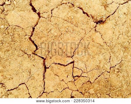Scorched Earth Background Texture. Photo. Brown. Black