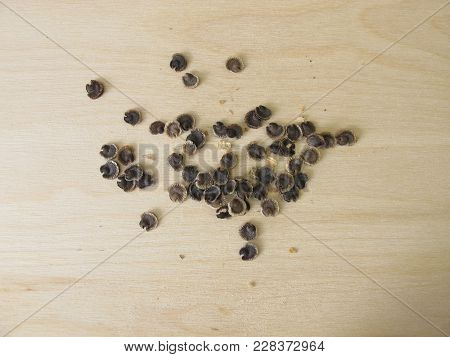 Seeds From Mallow Flowers On Wooden Board