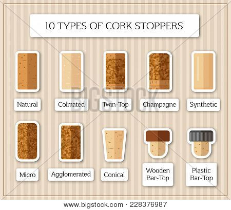 Ten Isolated Patches With Different Kinds Of Cork Stopper. Flat Design Corks And Title For Each Type