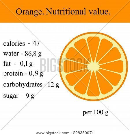 Healthy Lifestyle. Orange. Nutritional Value Health Vector Illustration