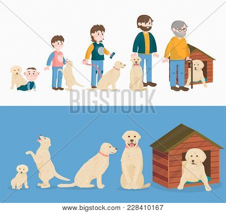 Child Growth Vector Dog Growing And Aging Concept From Baby Or Puppy To Aged Man Or Old Pet Characte