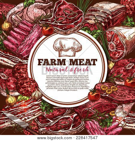 Fresh Meat Sketch Poster For Organic Farm Or Grocery Store. Vector Poster With Different Meat Beef S
