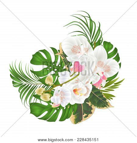 Bouquet With Tropical Flowers  Floral Arrangement, With Beautiful White Orchid, Palm,philodendron An