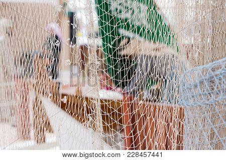 White Fishing Net In Janadriyah Festival Essay