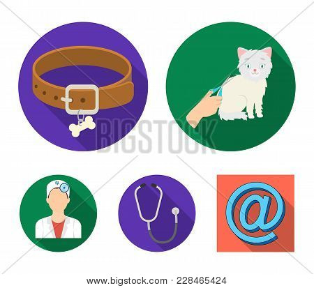Collar, Bone, Cat, Haircut .vet Clinic Set Collection Icons In Flat Style Vector Symbol Stock Illust
