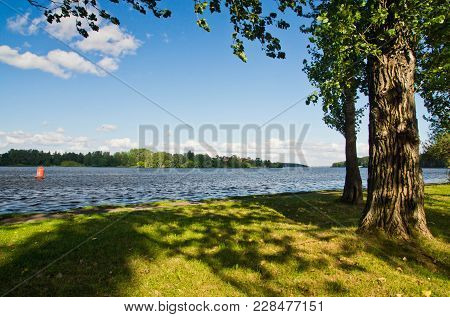 Park And Lake On Sunny Summer Day