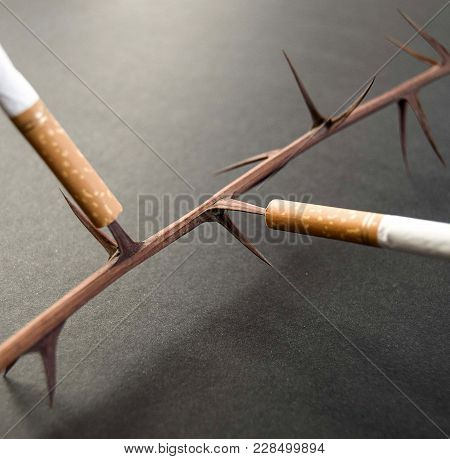 Smoking Is Harmful Like A Thorn In Our Lungs