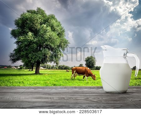 Pitcher Of Milk On Cow Background On Green Meadow With Tree