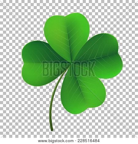 Vector Four-leaf Shamrock Clover Icon. Lucky Fower-leafed Symbol Of Irish Beer Festival St Patrick's