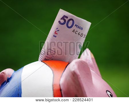 Closeup Of A Piggy Bank With A Bill Of Fifty On Its Back With Blurred Background