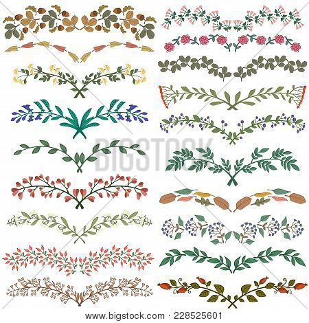 Set Of Dividers In Nature Design. Vector Illustration.
