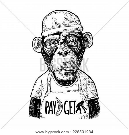 Monkeys Fast Food Worker Serving Fast Food Dressed In Cap And T-shirt With Pay Get Lettering. Vintag