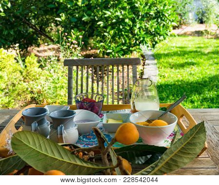 Breakfast Meal Setting In A Garden On Sunny Morning. Healthy Meal Outdoors Still Life