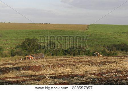 Paraíso Do Norte, Pr, Brasil. 29/07/2003. Trator Recolhe A Cana-de-açúcar Após Os Trabalhadores Tere