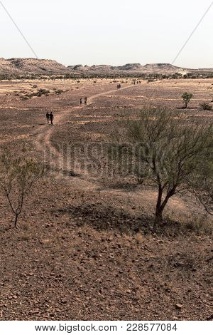 Nature Wild   And Outback In   The  Meteorite Fall