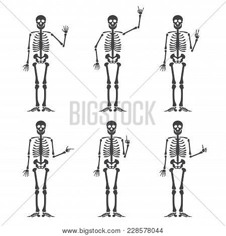 Skeleton Hand Gestures Set:ok, Finger Up, Finger Down, Fist, Middle Finger, Rock N Roll Horns, Clapp