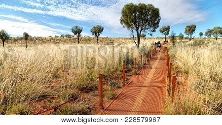 The Outback  Canyon Nature Wild   And Bush