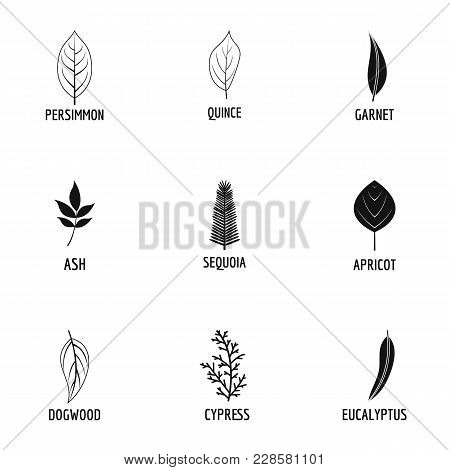 Leave Icons Set. Simple Set Of 9 Leave Vector Icons For Web Isolated On White Background