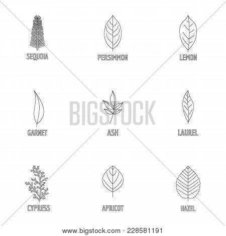 Foliage Icons Set. Outline Set Of 9 Foliage Vector Icons For Web Isolated On White Background