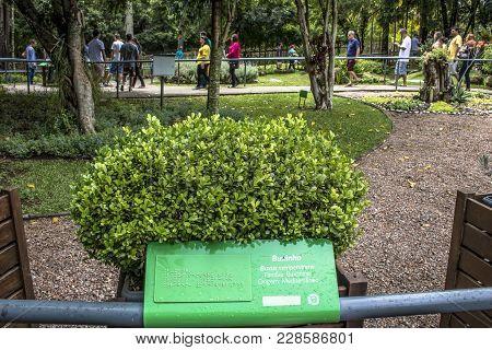 Curitiba, Brazil, December 30, 2017. Tourists In The Garden Of Sensations, A Sensory Tour To Stimula