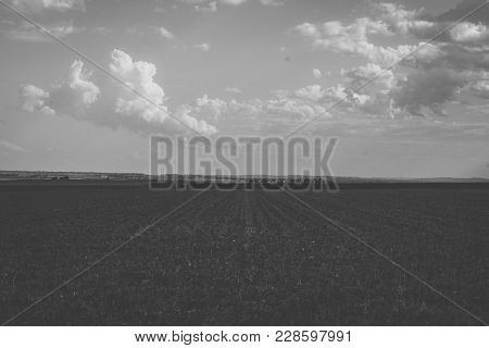 Agricultural and farming field in the countryside.
