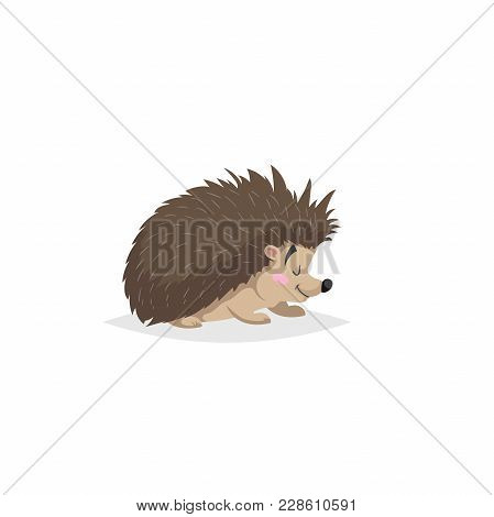 Cartoon Cheerful Standing Hedgehog. Forest Europe And North America Animal. Flat With Simple Gradien