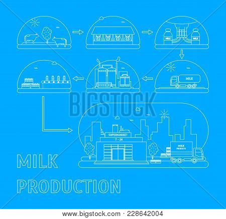 Milk Production Process Stages From Cow To Supermarket Delivery Business Concept Thin Line Style Des