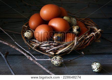 Fresh Chicken Egg. Wicker Basket With Chicken Eggs. Easter Egg.  Easter. Quail Egg
