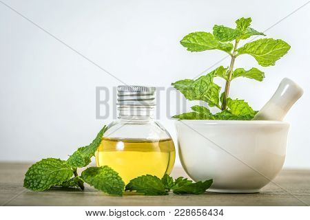 Aroma Essential Oil From Peppermint In The Bottle On The Table With Fresh Green Mint Leaf