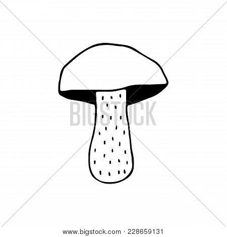 Linear Cartoon Hand Drawn Mushroom. Cute Vector Black And White Doodle Mushroom. Isolated Monochrome