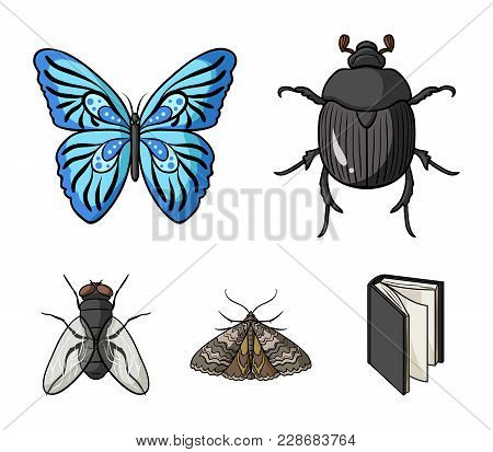 Wrecker, Parasite, Nature, Butterfly .insects Set Collection Icons In Cartoon Style Vector Symbol St