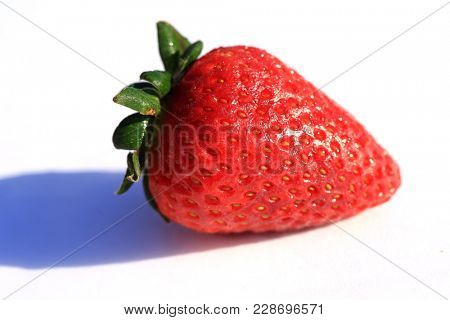 Strawberry isolated on white. Big Close Up of a Fresh Picked Vine Ripened Strawberry on a white background with room for your text.