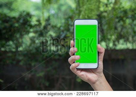 Hand Of Smart Man Holding Mobile Smart Phone With Chroma Key Green Screen On Nature Background, New