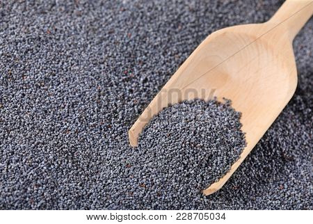scoop of healthy chia seeds on chia seeds background - close up