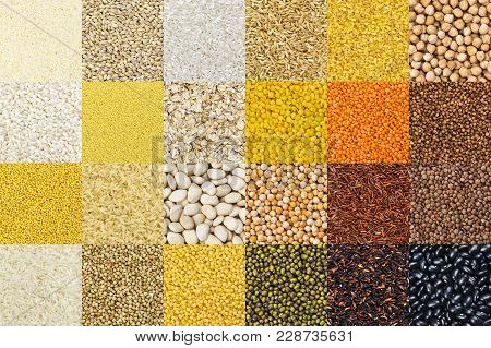 Big Collection Of Different Groats Backgrounds, Cereals Textures Collection. Closeup