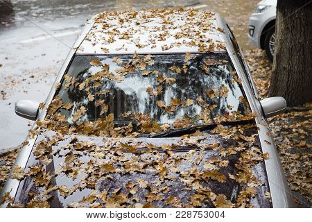 Dead Leaves And Car. Background Of A Dead Leaves And A Car.
