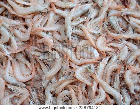 Group Of Fresh Raw Shrimp, Healthy Seafood.