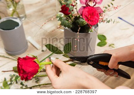 Making Bouquet In Flower Shop In Details. Female Hands Cut Rose Stem With Pruner