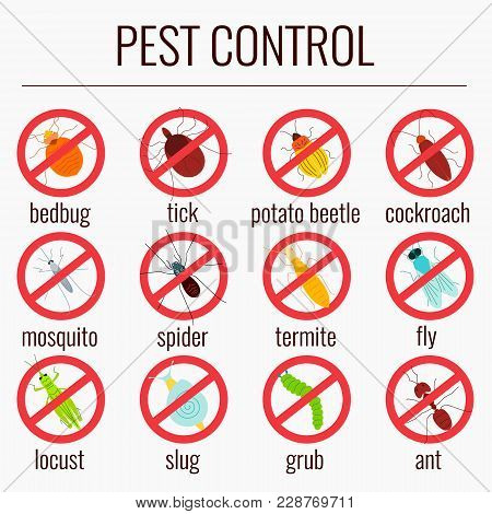 Pest Control Line Icon Set With Insects. Insect Repellent Emblem. Prohibition Beetle Warning Sign. P
