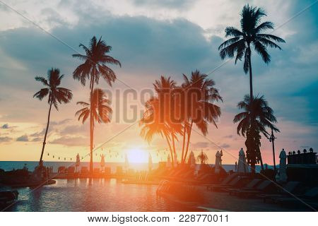 Palm trees silhouettes on a tropical sea beach during sunset.