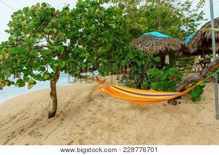 A Peaceful Place To Relax On The Beach, Yellow Hammock In The Trees